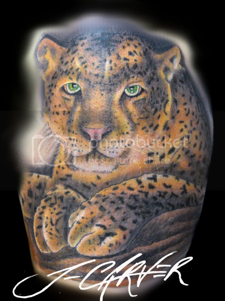 leopard Image